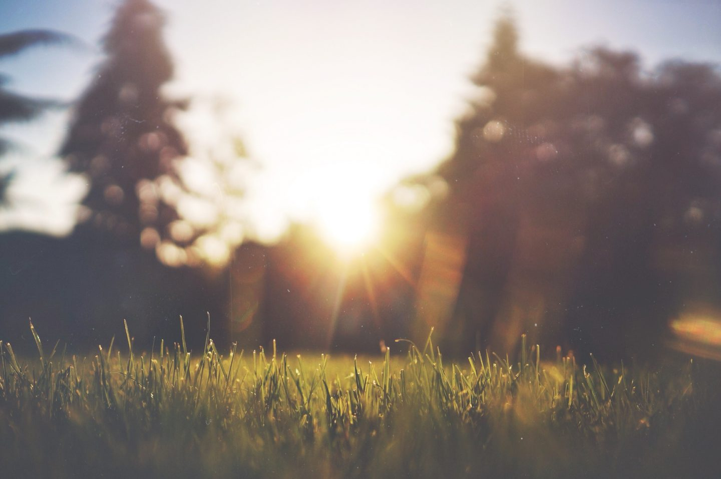 Sun Awareness Week – How To Be Safe In The Sun